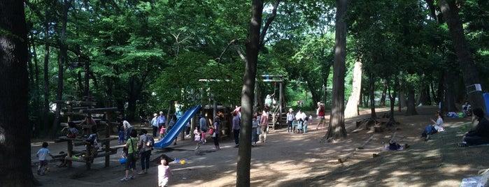 林試の森公園 冒険広場 is one of 公園.