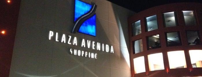 Plaza Avenida Shopping is one of Baladas por Rio Preto....