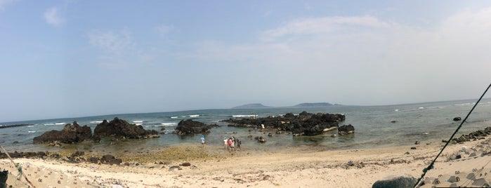Đảo Lý Sơn is one of du lịch - lịch sử.