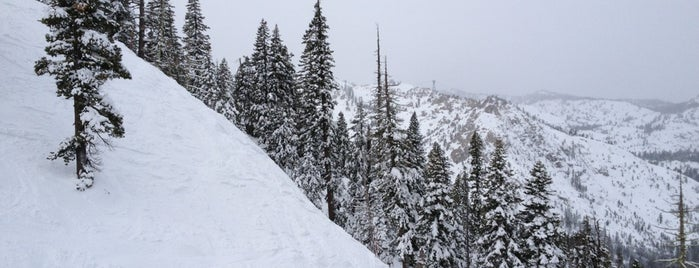 Squaw Creek Lift is one of Squaw Lifts.