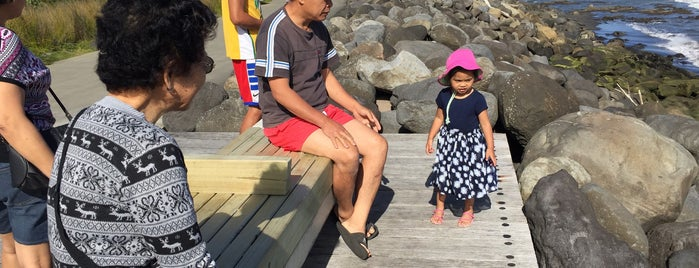 New Plymouth's Coastal Walkway is one of New Plymouth To-Do List.