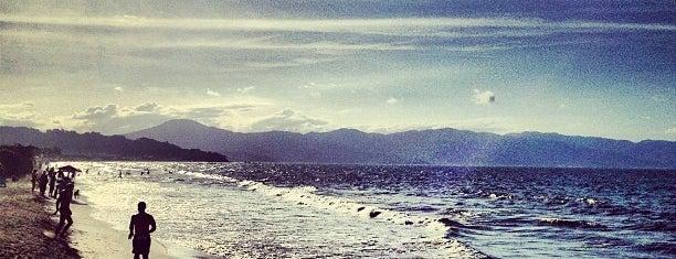 Praia de Jurerê is one of Guide to Florianópolis's best spots.