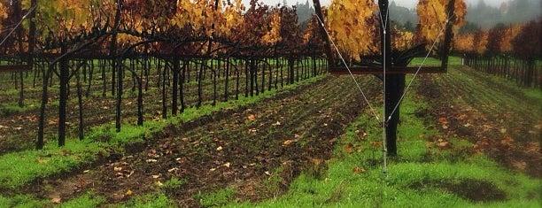 Alderbrook Winery is one of Best Healdsburg Wineries.