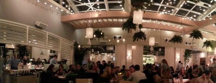 Summer House Santa Monica is one of Lettuce Entertain You Restaurants.