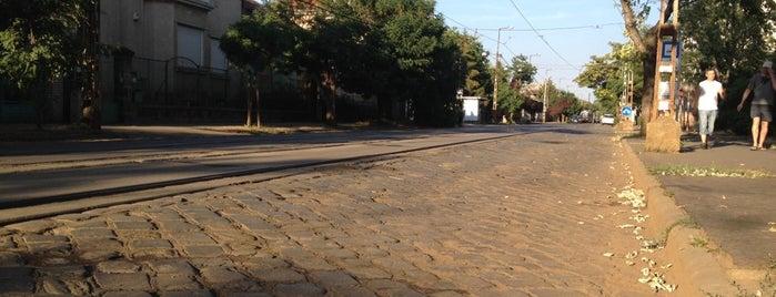 Szülőotthon (12, 14) is one of Pesti villamosmegállók.