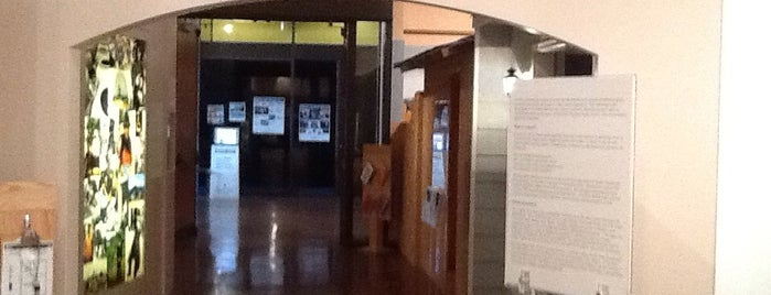 Mathers Museum of World Culture is one of B-town for Kids.