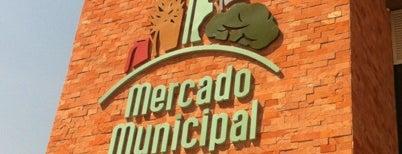 Mercado Municipal de Curitiba is one of Coffe Shops.