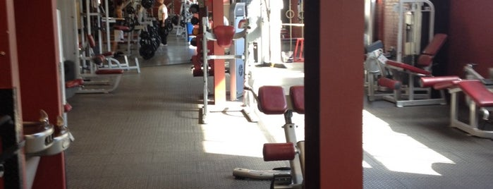 Steel Fitness Riverport is one of Tina's tips.