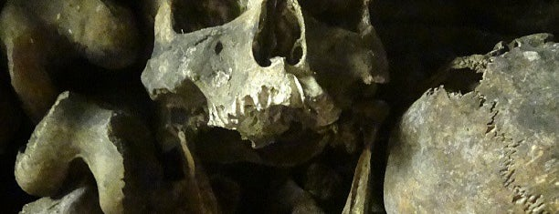 Catacombs of Paris is one of First Time in Paris?.