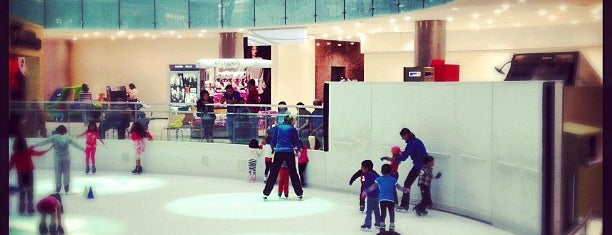 Ice Skating Center is one of Dallas Outings.