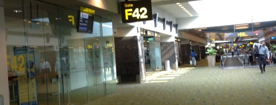 Gate F42 is one of SIN Airport Gates.