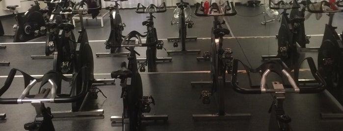 Friskis & Svettis is one of Friskis och Svettis (workout/gym) Stockholm.