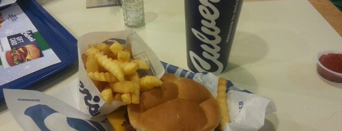 Culver's is one of Stuff i love in downriver.