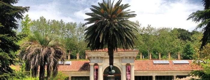 Real Jardín Botánico is one of @ Madrid (MD, España).