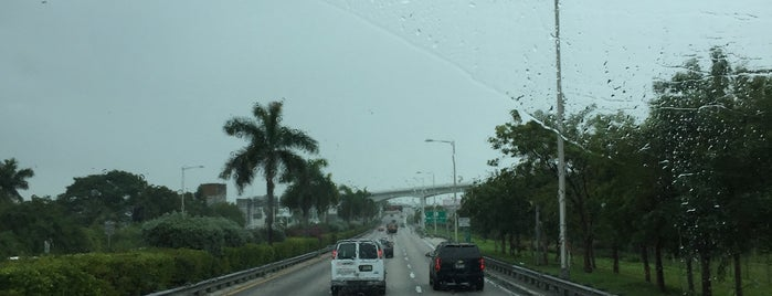 Miami Jai Alai is one of The Layover: Miami.
