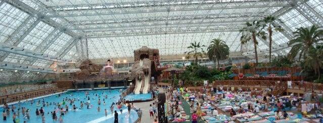 東京サマーランド (Summerland Water Adventure) is one of Favorite Arts & Entertainment.
