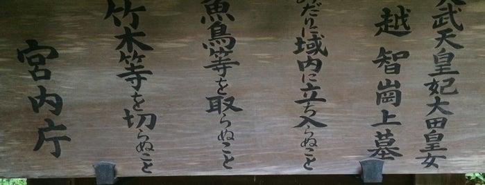 齊明天皇 越智崗上陵 (車木ケンノウ古墳) is one of 天皇陵.