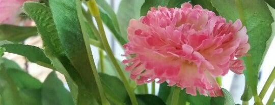 Blossom Teas 櫻茶屋 is one of Burnaby Eats.