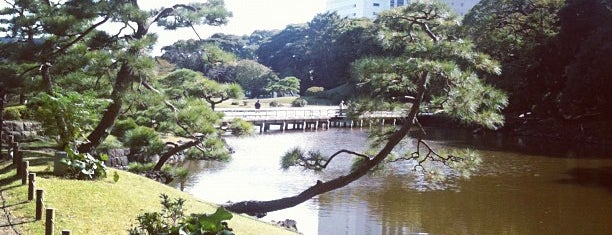 浜離宮恩賜庭園 (Hamarikyu Garden) is one of Japan must-dos!.
