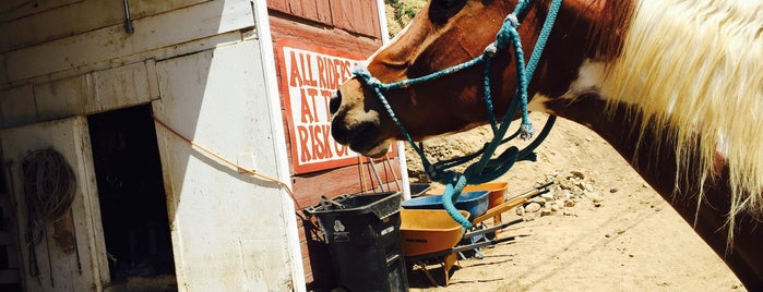 Sunset Ranch Hollywood Stables is one of Recommendations from you to me 4square and 4cast.