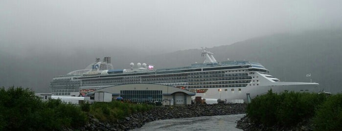 Island Princess is one of TRIPS.