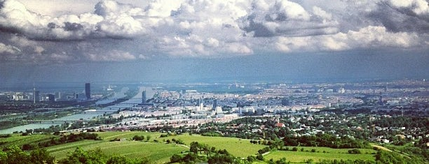 Kahlenberg is one of Chillout @Vienna.
