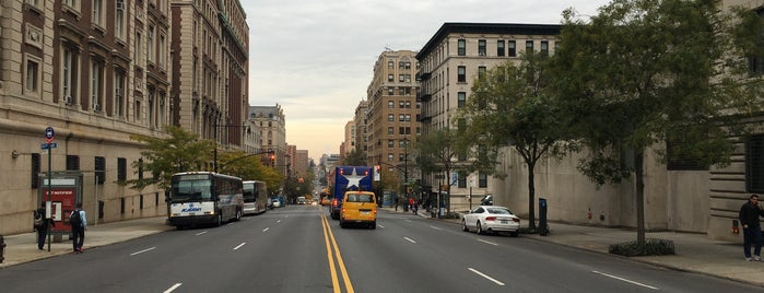 Morningside Heights is one of Nearby Biking Excursions.