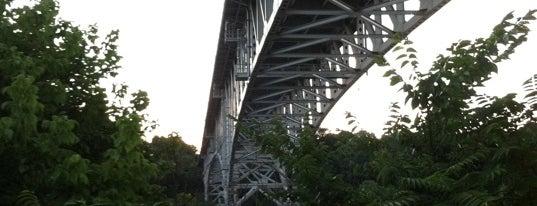 Homestead Grays Bridge is one of Documerica.