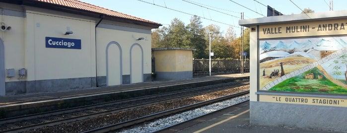 Stazione Cucciago is one of Linee S e Passante Ferroviario di Milano.