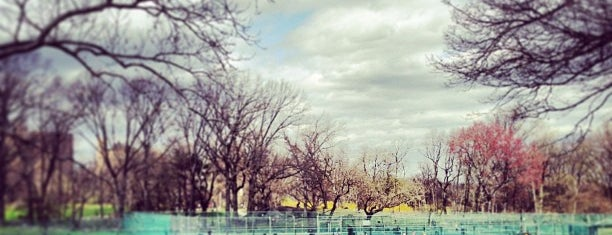 Central Park Tennis Center is one of ny2.