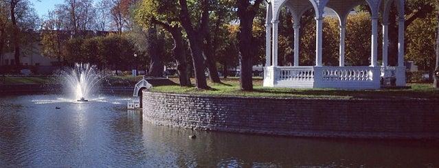 Kadrioru Park is one of outdoor.