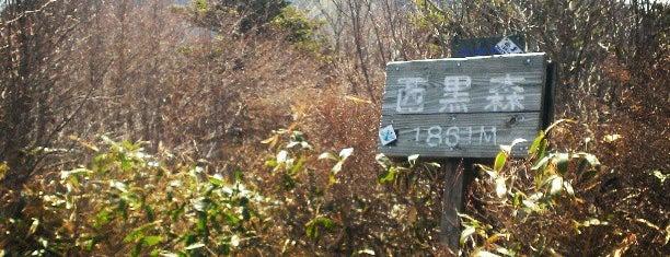 西黒森 is one of 四国の山.