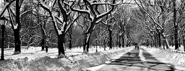 Snowpocalypse NYC 2014 is one of Pocalypses I've survived.