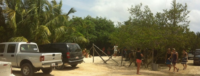 Casa Cenote is one of tulum.