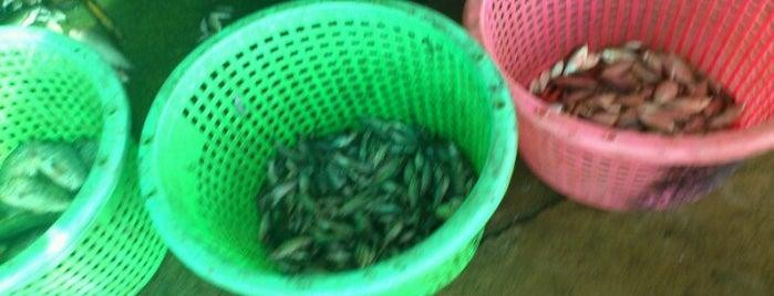 ตลาดแพปลา (วังน้ำเย็น) is one of พี่ เบสท์.