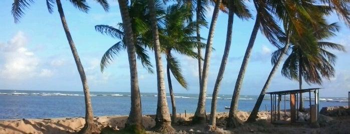 Barra Grande is one of Salvas.