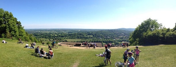 Box Hill National Trust is one of PIBWTD.
