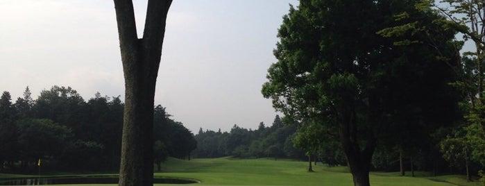 太平洋クラブ&アソシエイツ 美野里コース is one of ゴルフ場(茨城).
