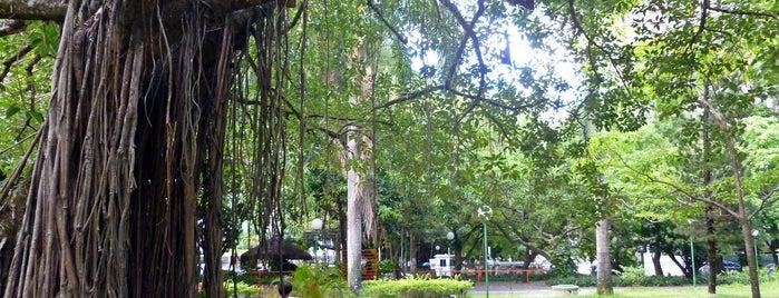 Parque da Jaqueira is one of Locais para passear, relaxar e se divertir.