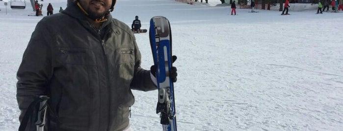 Edelweiss Ski Resort is one of Ottawa.