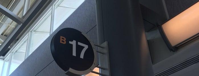 Gate B17 is one of Cincinnati Airport.