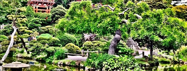 72 hours in san francisco for Japanese tea garden hours