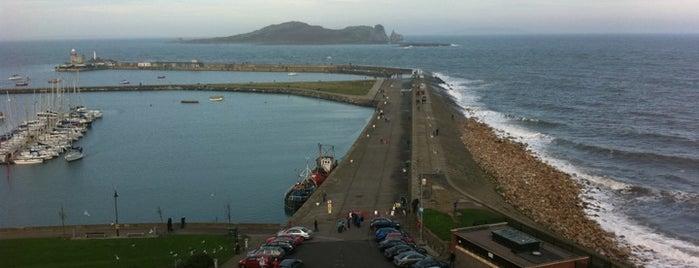 Howth East Pier is one of Best Ocean spots.