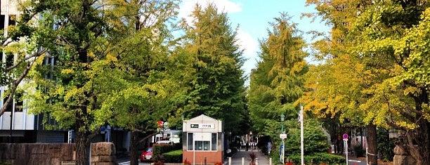 Hamacho Park is one of 喫煙所.