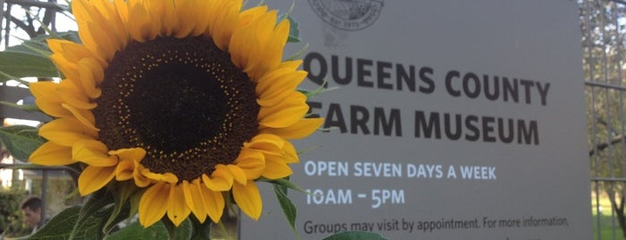 Queens County Farm Museum is one of places/events.