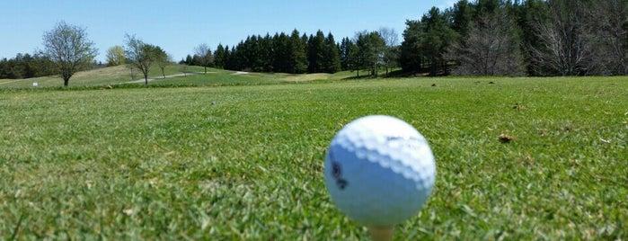 Mill Run Golf Club is one of Free WIFI Hot Spots in Durham Region.