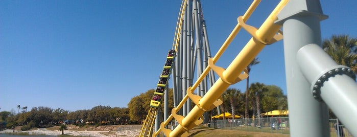 Steel Eel® is one of Roller Coaster Mania.