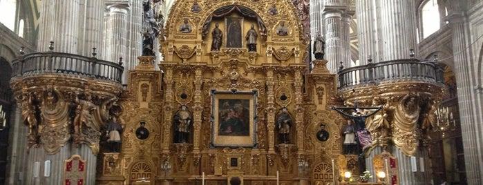 Catedral Metropolitana de la Asunción de María is one of Mexico City.