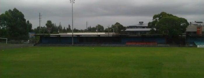 Lambert Park is one of Soccer.
