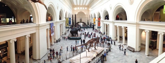 The Field Museum is one of Must See Chi List.